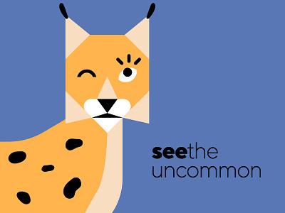 See Digital - Brand teaser bauhaus geometry icon eye animal brand visual identity mark lynx branding logo design vector illustration flat minimal simple