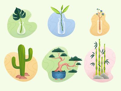 Plants set colorful fun clean cactus bonsai bamboo leaf zen icon tree plants nature plant organic vector illustration flat minimal simple