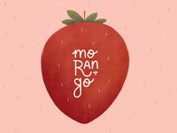 Fruit Illustration - strawberry