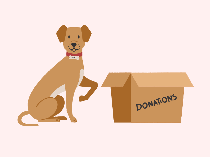 Donation Dog - Update dog illustration dog pet app pets pet animal illustration animal art animals animal app website animation character vector illustration ui ux flat simple minimal