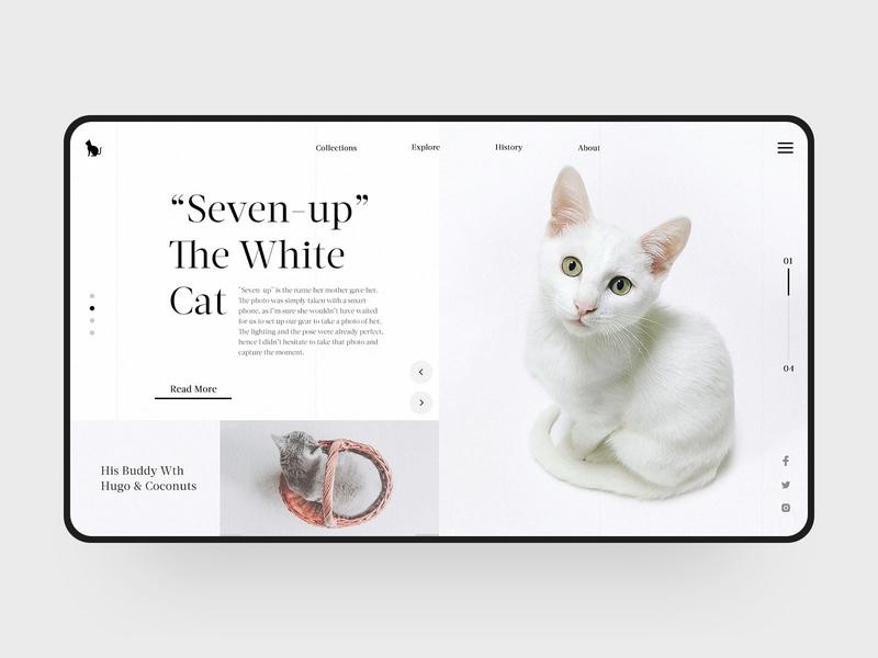 The White Cat cute elegant lovely animal cat visual fashion web simple design web design