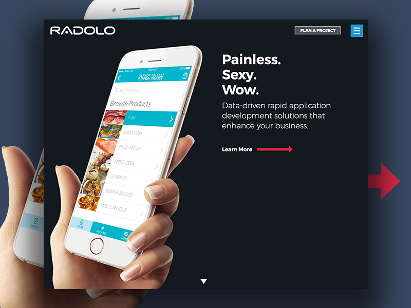 Radolo App Development New Orleans company mobile agency application web new orleans development app website