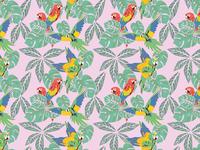 Macawzonia AOP Pattern