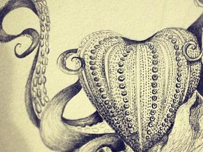 Sea Urchin Heart and Octopus nautical sea heart octopus storybook