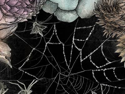 Carpe Diem florals graphite drawing illustration spiderweb