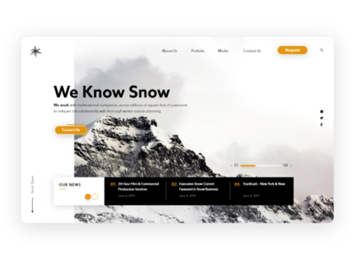 Snow_Control website concept