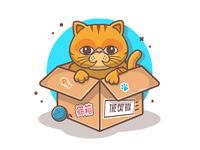 Cat, cat, and cat 🐱🐱