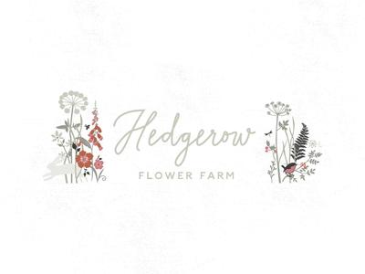 HEDGEROW FLOWER FARM wildlife lettering nature berries hedgerow logo wildflowers illustration