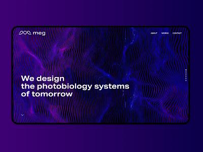 MEG Website UI branding ux ui website