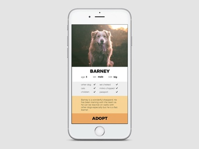 User (dog) profile 006 user-profile dailyui