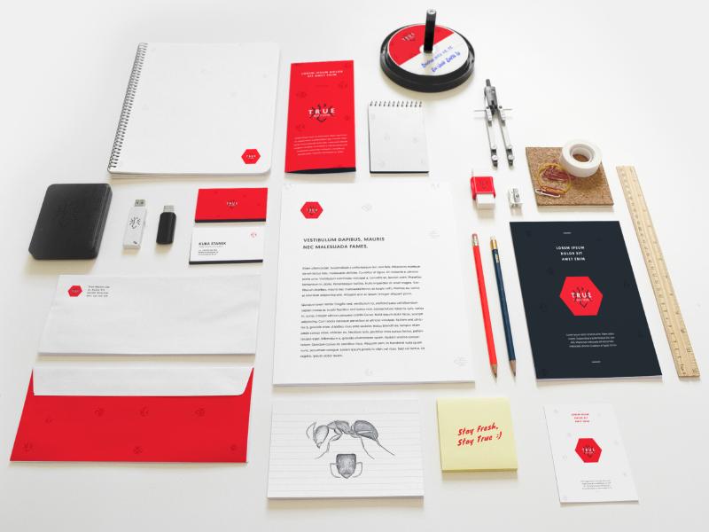 Visual Identity Sneak Peak logo ci branding identity print letter businesscard