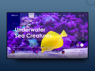 SeaWorld. designinspiration photography typography designer webpage website landing uiux dailydesign minimalistic clean