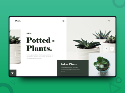 Plant UI Design freelance designer web design uiux ui design photography minimalism minimal interface graphics design design inspiration daily design clean
