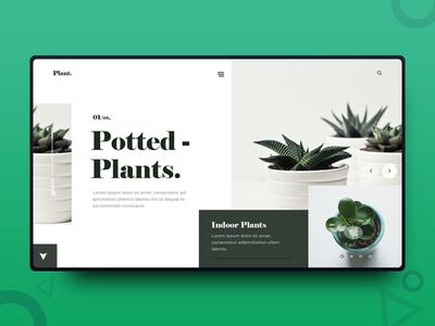Plant UI Design freelance designer web design uiux ui design photography minimalism minimal interface graphics design design inspiration daily design clean