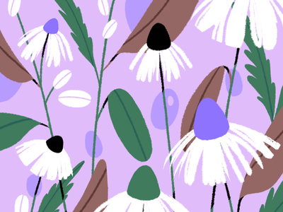 🌱 Daisy 🌱 pattern purple nature flower daisy plant branding vector graphic design flat illustration