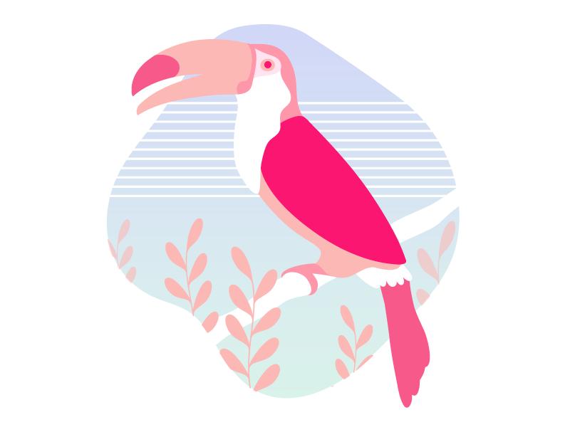 Pink jungle bird jungle parrot graphic illustration flat design character mytsak