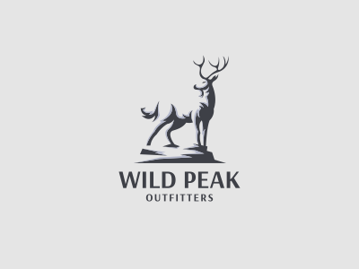 Wild Peak Outfitters sold idea proses icon forsale m letering logo