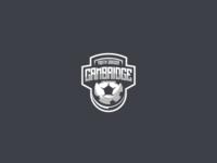 Cambridge Youth Soccer