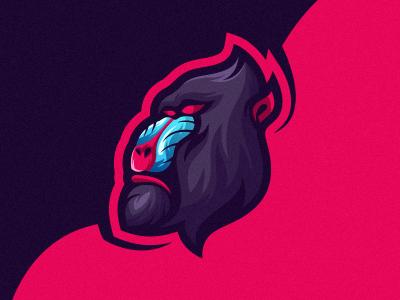 baboon 1