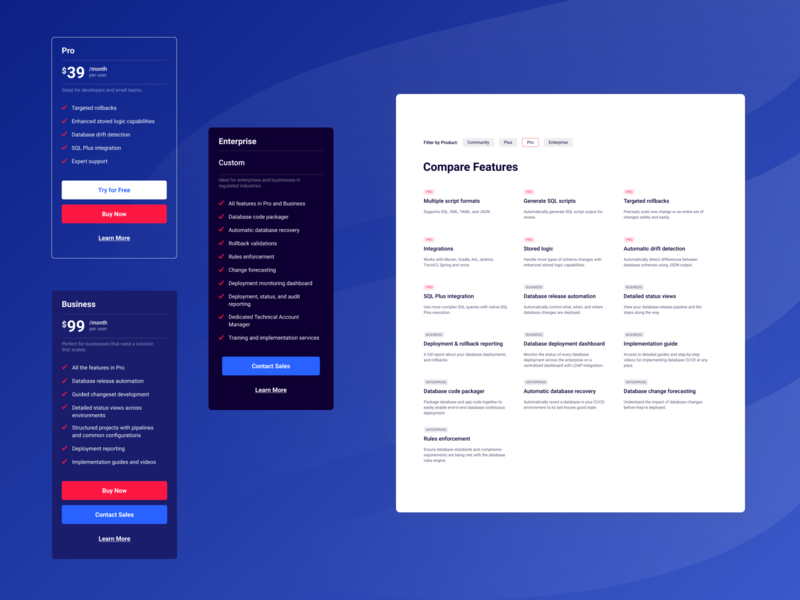 Liquibase Pricing Components webdesign user interface ux flat minimal ui website user experience pricing design