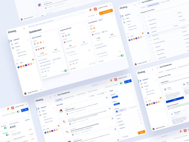 Minerva Databoxes analytics data databoxes uiux ux clean design ui