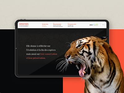 Museum de Toulouse webdesign interface uxui ux museum musée