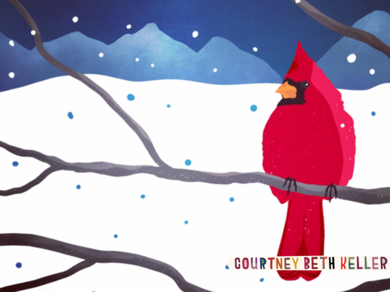 Snow bird holiday art winter snow illustration bird cardinal