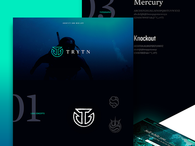 Behance Case Study for Trytn branding identity ux ui