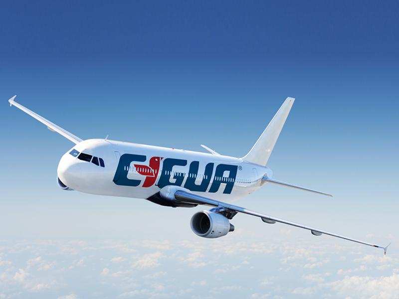 Cigua Airplane: from archive: old brand 2007 icon simplicity brandmark logomark