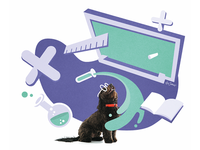 The dog in class calendar illustration design dog