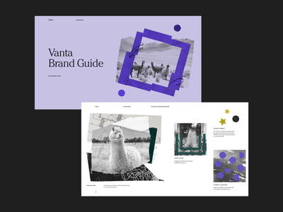 Vanta Brand Guide - Illustration collage textures illustration guide brand guide vanta