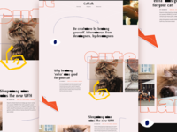 CatTalk Site Design