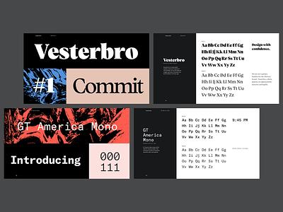 Typography - mini-specimens branding guide brand identity gt america vesterbro typography