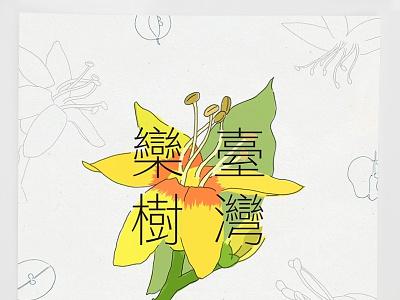 Taiwan Flower series - September: Flamegold illustration calendar taiwan flower