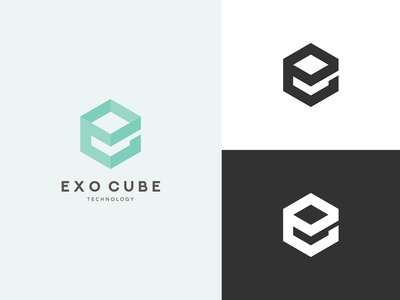 Logo for sale - Exo Cube