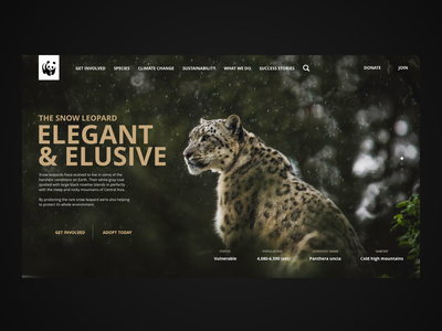 WWF website concept web uidesigner uxdesigner climate change sustainable sustainability nature interaction design typography web design ux ui design