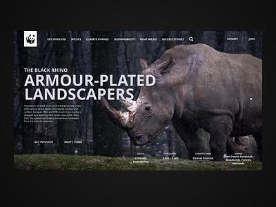 The Black Rhino website concept for WWF uiux ui  ux design webdesign typography sustainability web uxdesigner uidesigner nature interaction design web design ui ux design