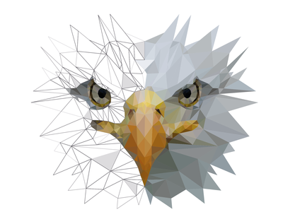 eAgLe bird sharp triangle art vector eagle