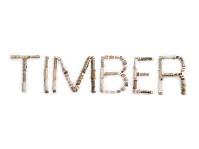 Timber Typeface graphic design design logo nature organic urban letters stick wood typography font typeface