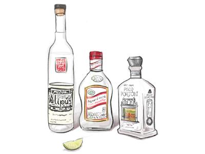 Booze + doodle = boozle. illustration alcohol peru colombia mexico pisco aguardiente mezcal