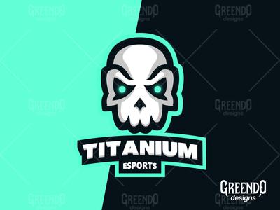 Titanium Skull for