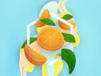Oranges! 🍊🍊🍊