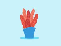 Color Plant 01
