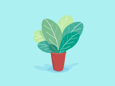 Color Plant 05 vectors vector illustration nature plants plant