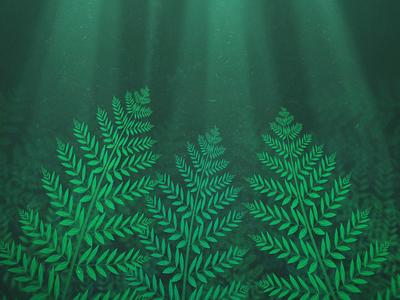 Ferns woods rays light illustration forest nature ferns fern