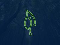 Data • Connectivity • Growth