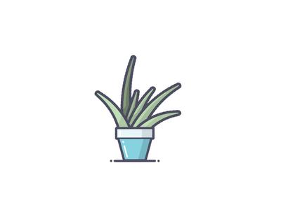 Aloe Plant simple pot plant aloe line art illustration