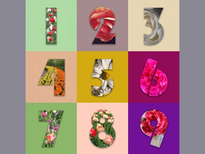 Floral Numerals 2020 type design graphic design mixed media illustration typography