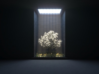 Tree in prison