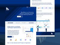 Bluewalrus - Website design